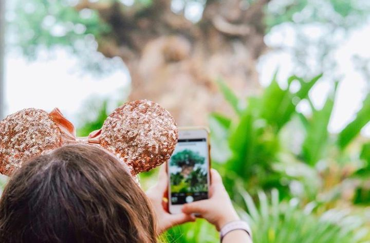 Why I Go To Disney So Much – Childless Millenials At Disney